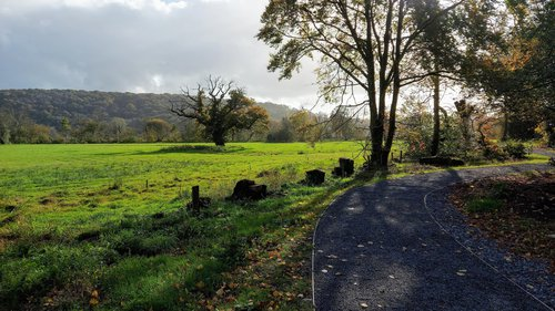 The Great Meadow at the Bishops Park Abergwili - [c] Carol Thomas