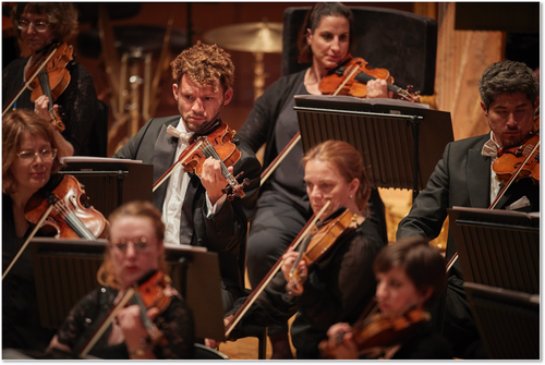 Welsh National Opera Orchestra [credit Kiran Ridley]