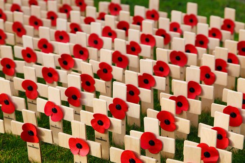 Remembrance: Poppy crosses